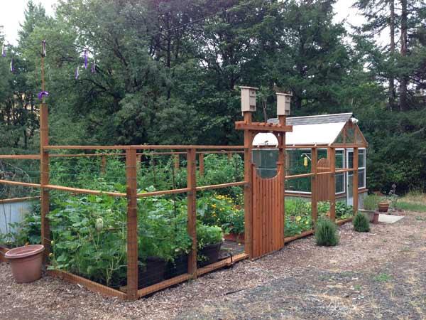 ClintBrown_garden