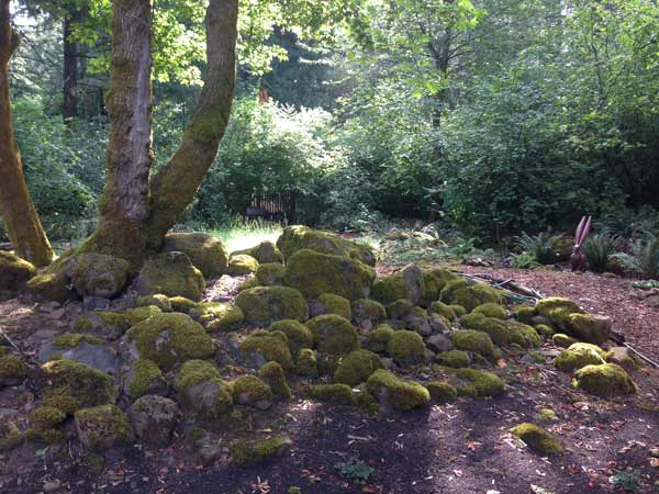 JaqHurlbert_mossy-rocks