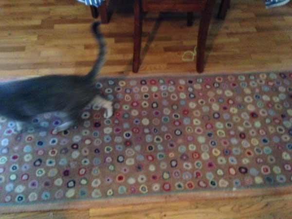 KikiMasthem_carpet