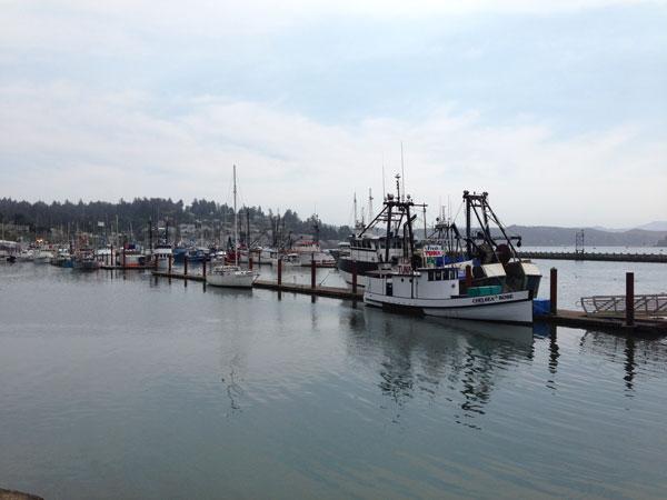 Newport-fishing-boats