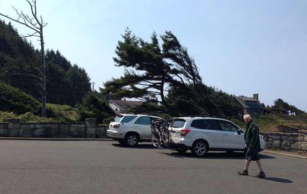 car-bikes